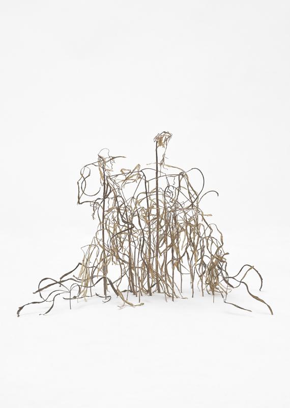 Untitled_7-aka-treesbushessnow.jpg