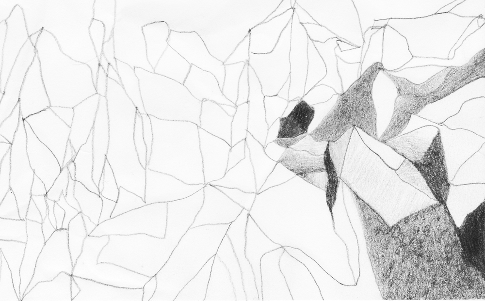 crumpled grayscale landscape pt 1,Screen Shot 2018-02-14 at 10.43.30 PM.png
