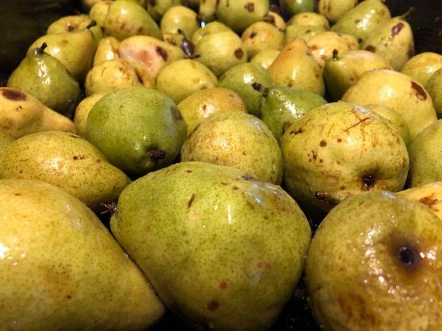 Golden Potomac pears