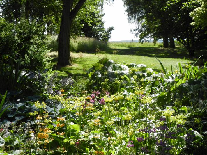 hidcote manor garden july