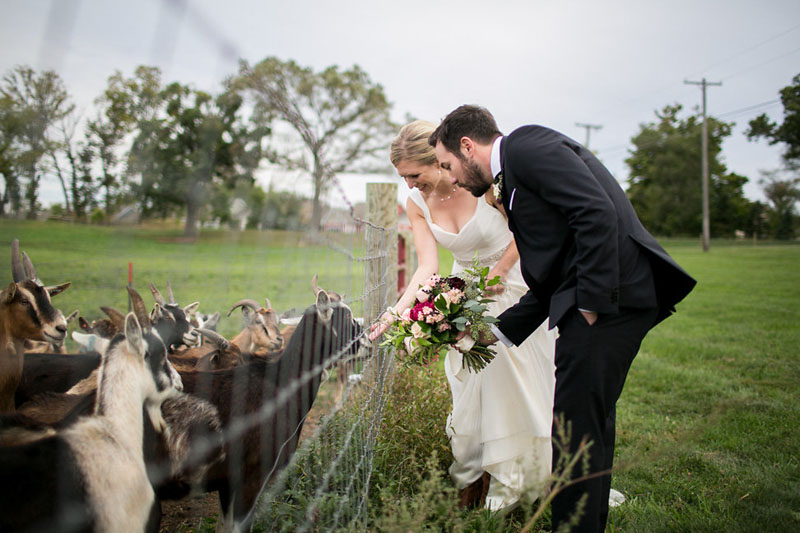 fall zingermans cornman farms wedding