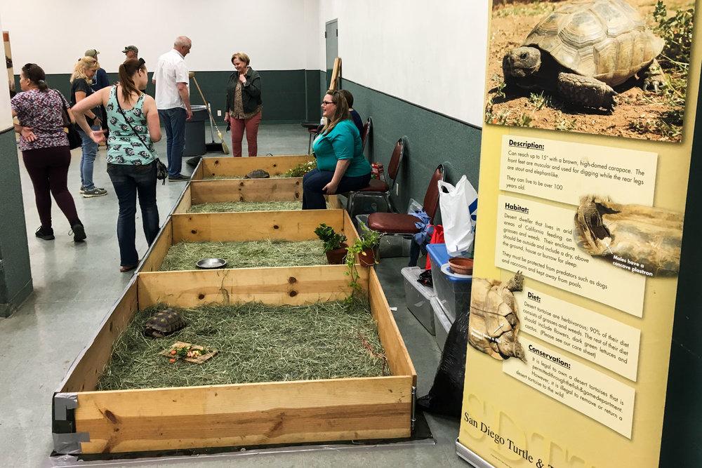 events — San Diego Turtle & Tortoise Society