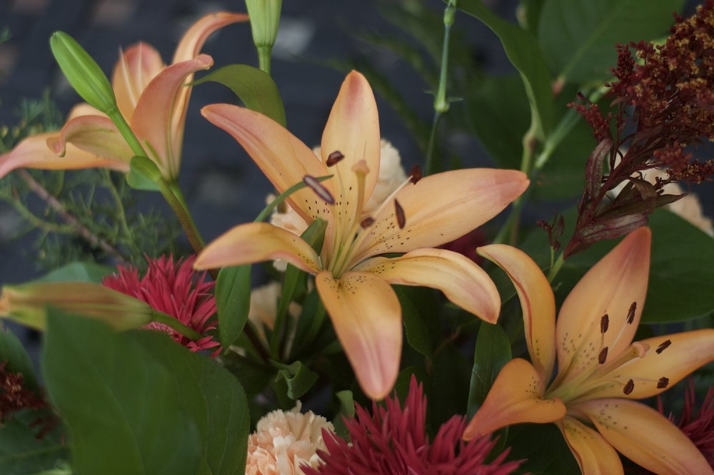 Peachy orange Asiatic lilies as the large focal flowers