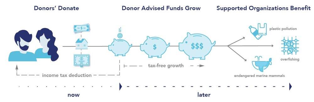 donor-advised-fund.jpg