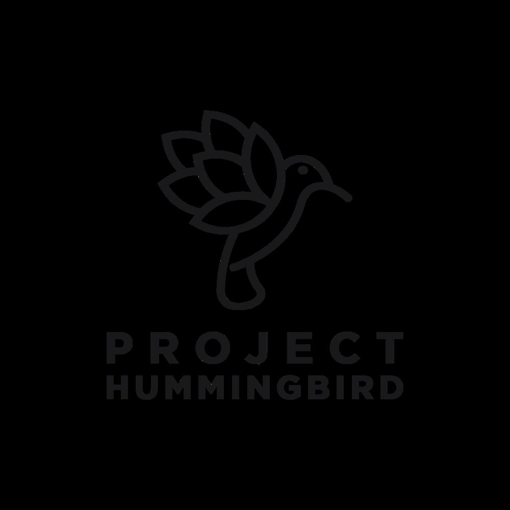 Project HummingBird 1.png