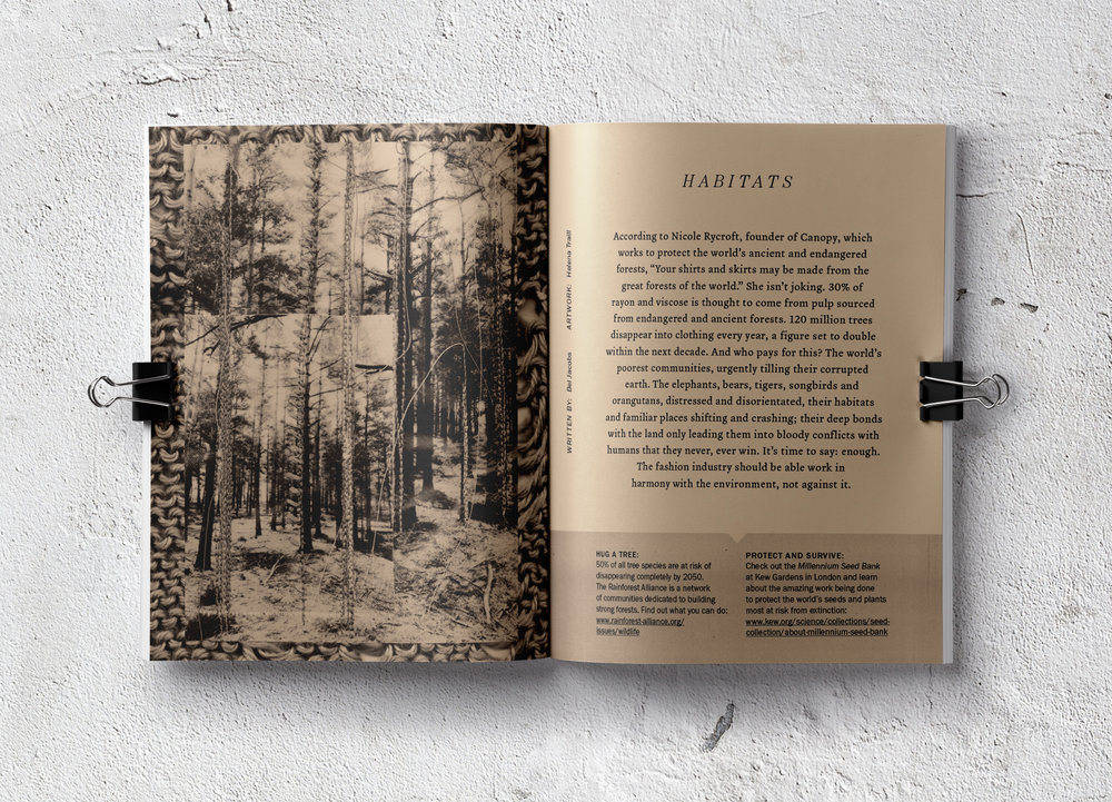 Central Saint Martins graphic design student Helena Traill illustrates the page on Habitats. Words by me.