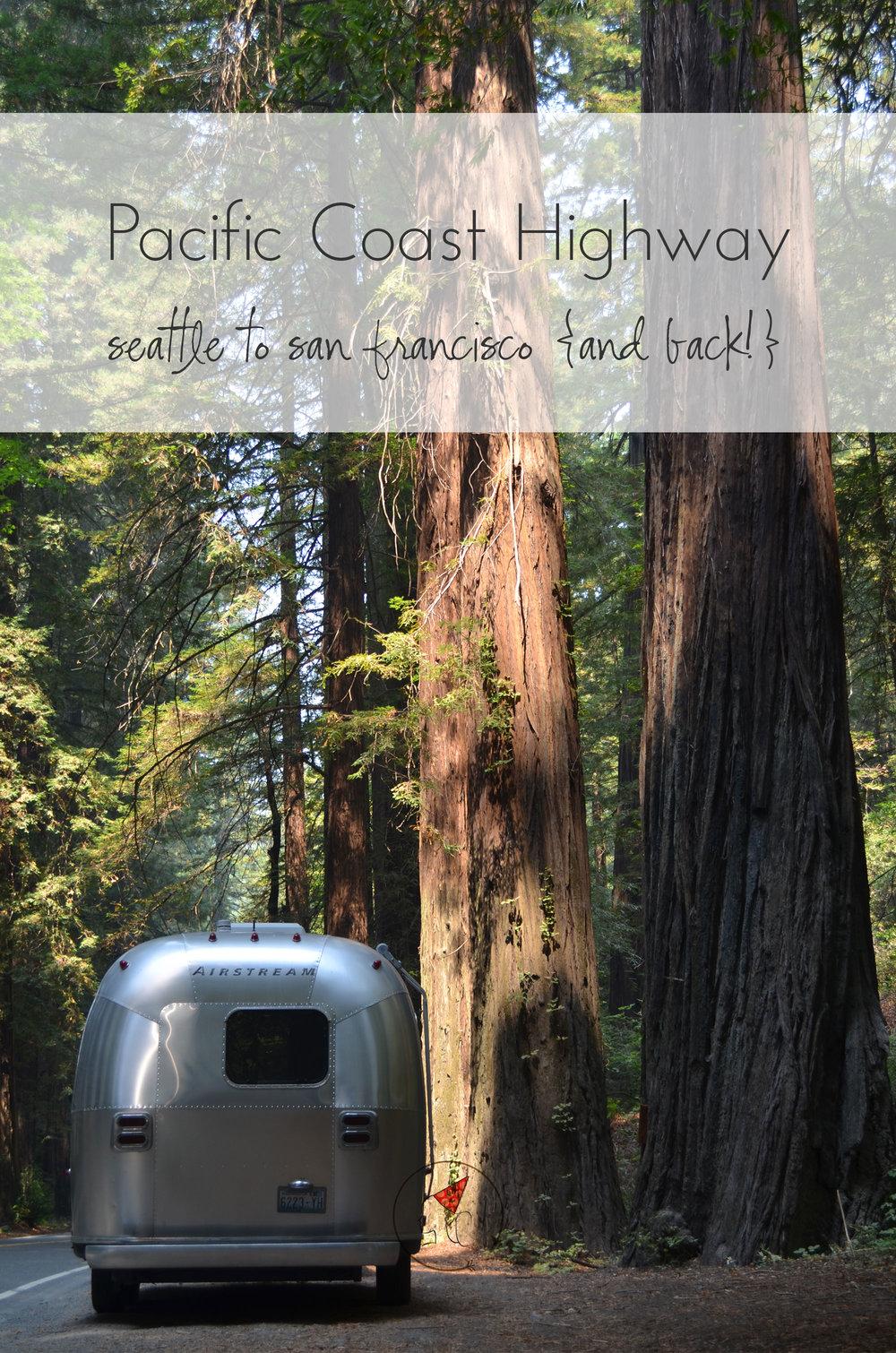 Ali Hedin | Pacific Coast Highway Trip