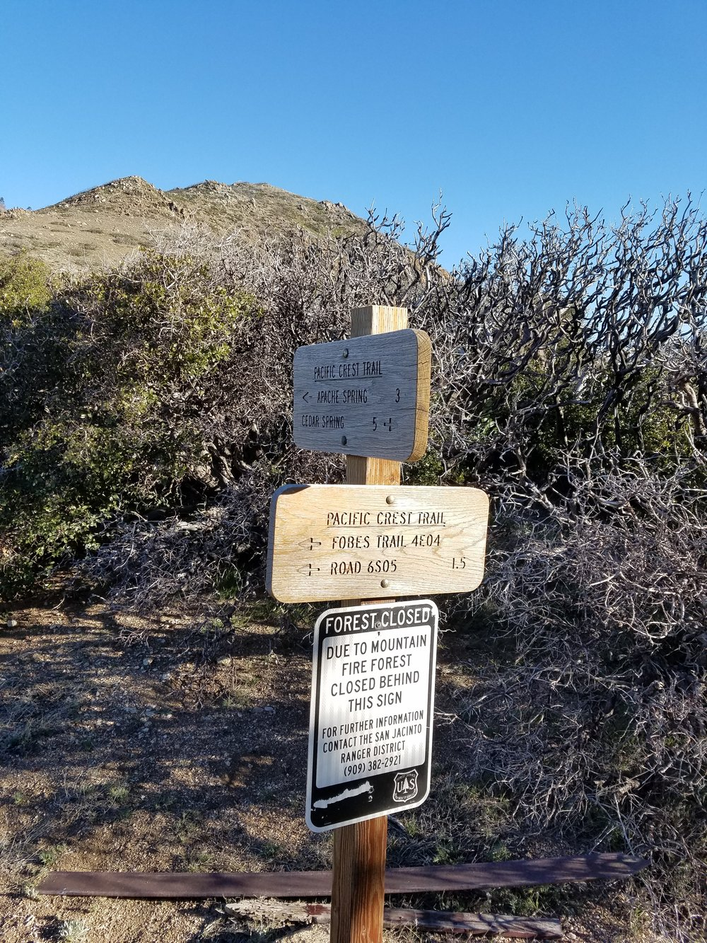 Forest closure at Fobes trail