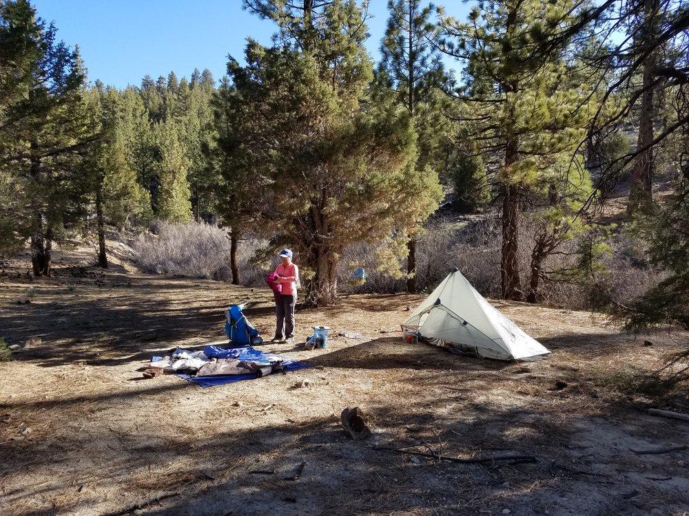 Morning camp at Caribou Creek.
