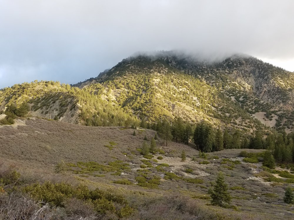 Heading up into the clouds covering Mt. Williamson.