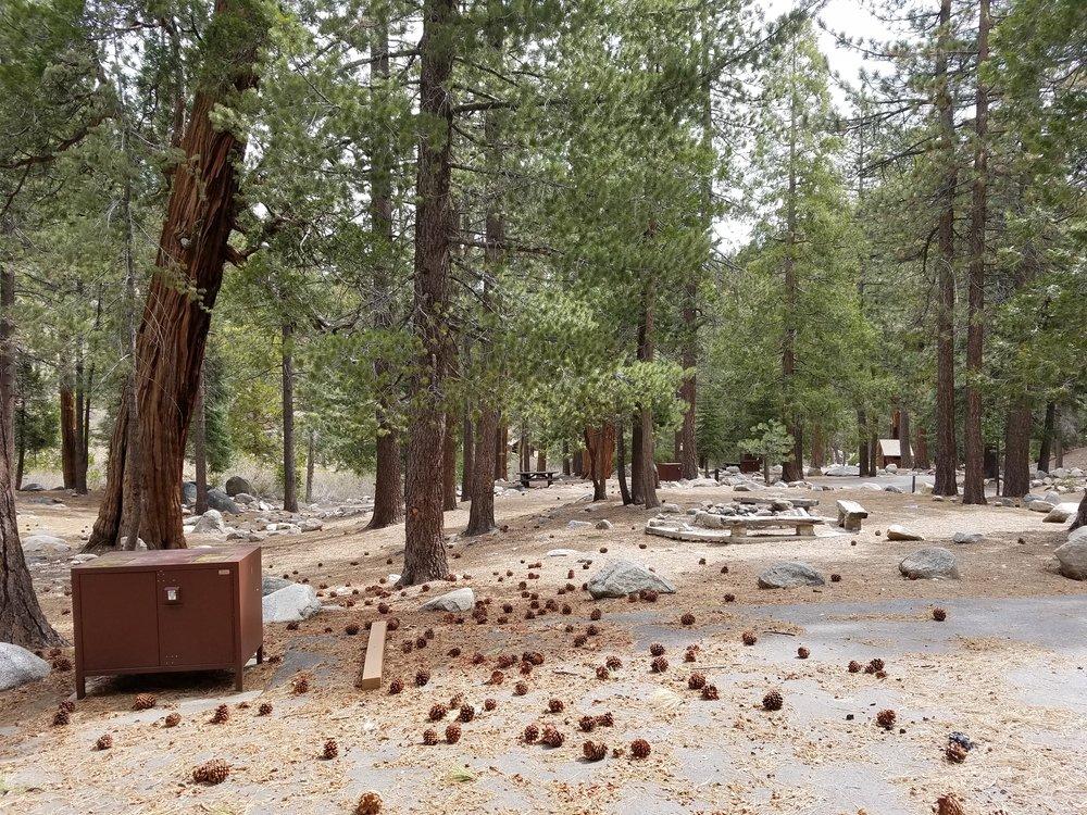 Deserted Buckhart Campground. Such a nice campground!