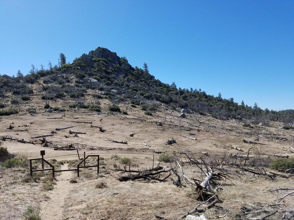 Desolate burn area