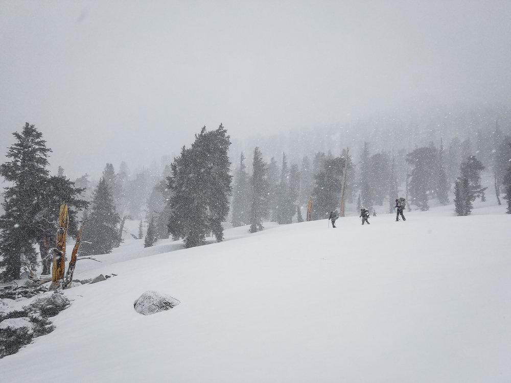 Trekking through the storm just before Cottonwood Pass.