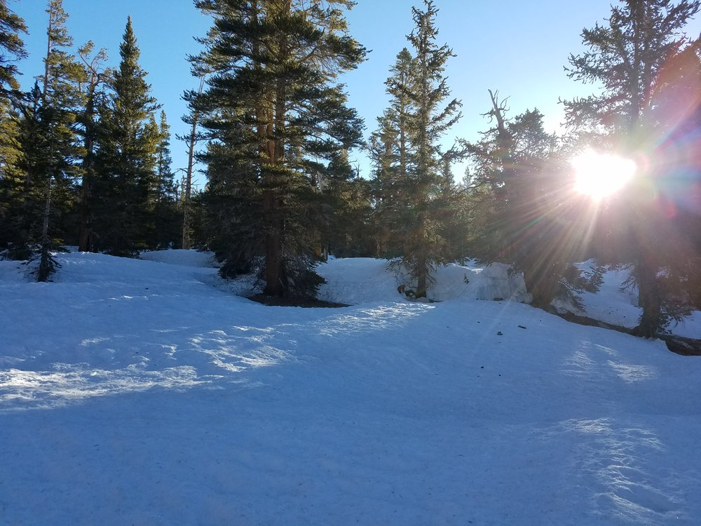 """Sunrise at the saddle above camp. Our GPS marked this as a """"water source""""..."""