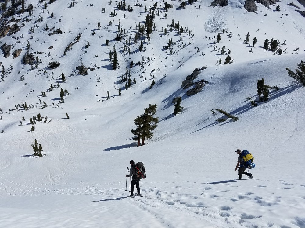 My teammates snowshoe-skiing and plunge-stepping down the perfect snow heading down to Fish Creek.