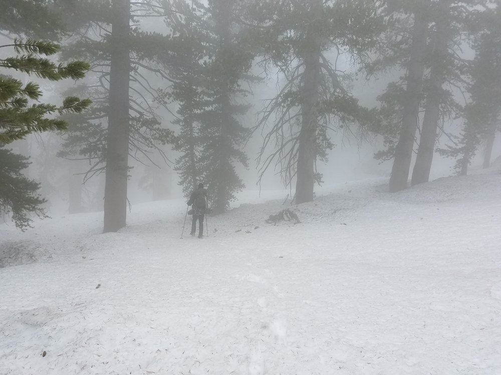 Moving through the fog towards Mammoth Pass.