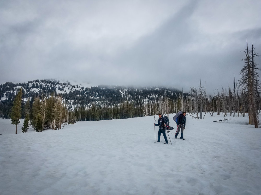 Amped and Thor emerging from the woods near Horseshoe Lake, ready to conquer Mammoth's food supply.