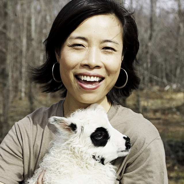 Co-Owner Min Ye with Icelandic lamb