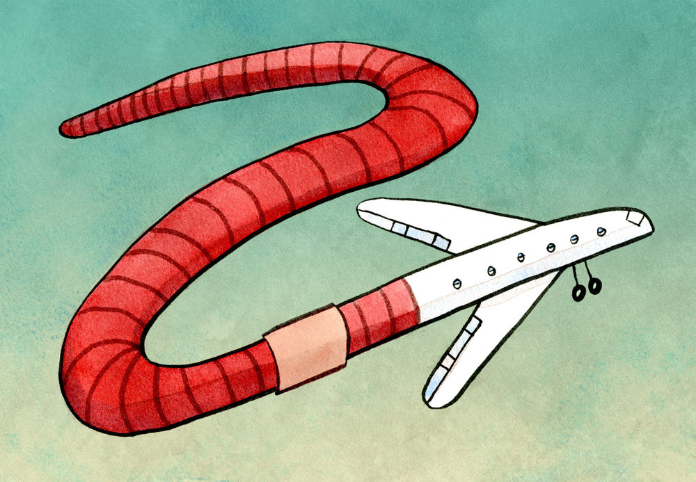 Worm Airlines