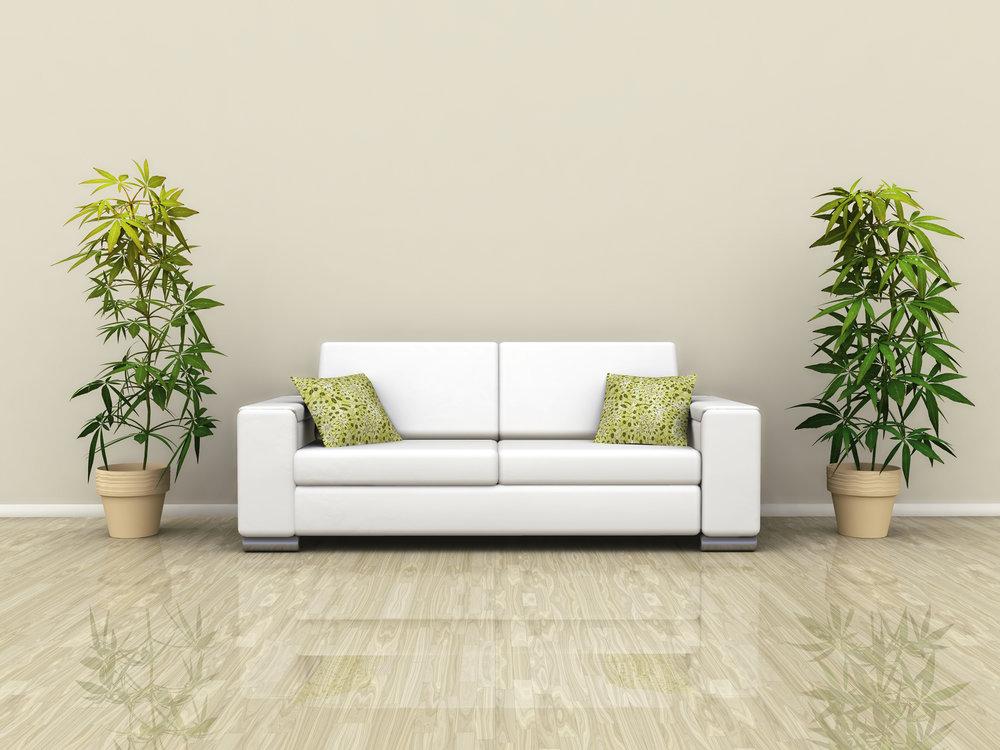 sofa-plants.jpg
