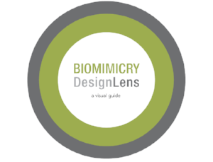 Graphic property of Biomimicry 3.8