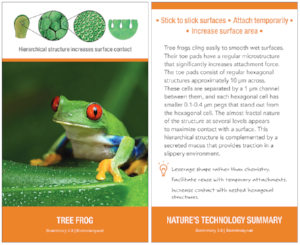 Nature's Technology Summary card