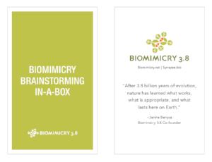 The toolkit includes a Biomimicry Brainstorming-in-a-Box card deck