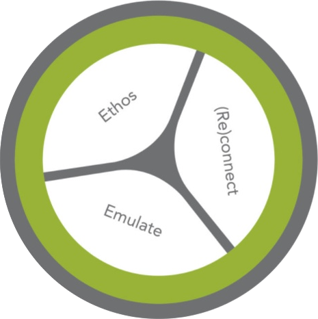 Biomimicry Examples Tips Resources Synapse By Biomimicry 38