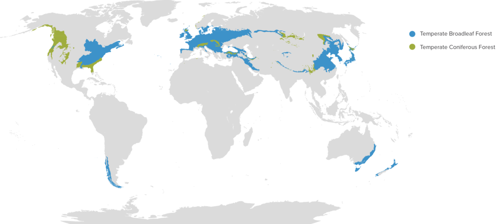 Original map by Terpsichores