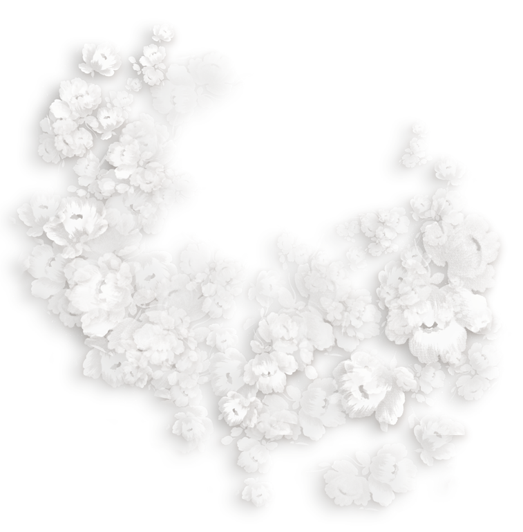 Transparent_White_Flowers_Decoration.png