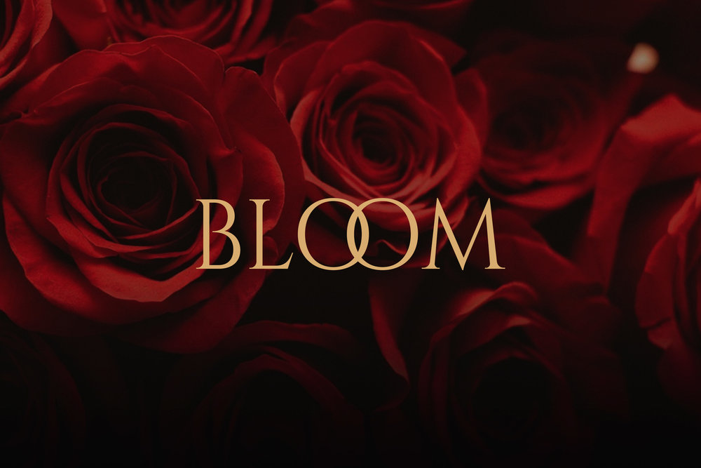 BLOOM-COVER-WEB.jpg