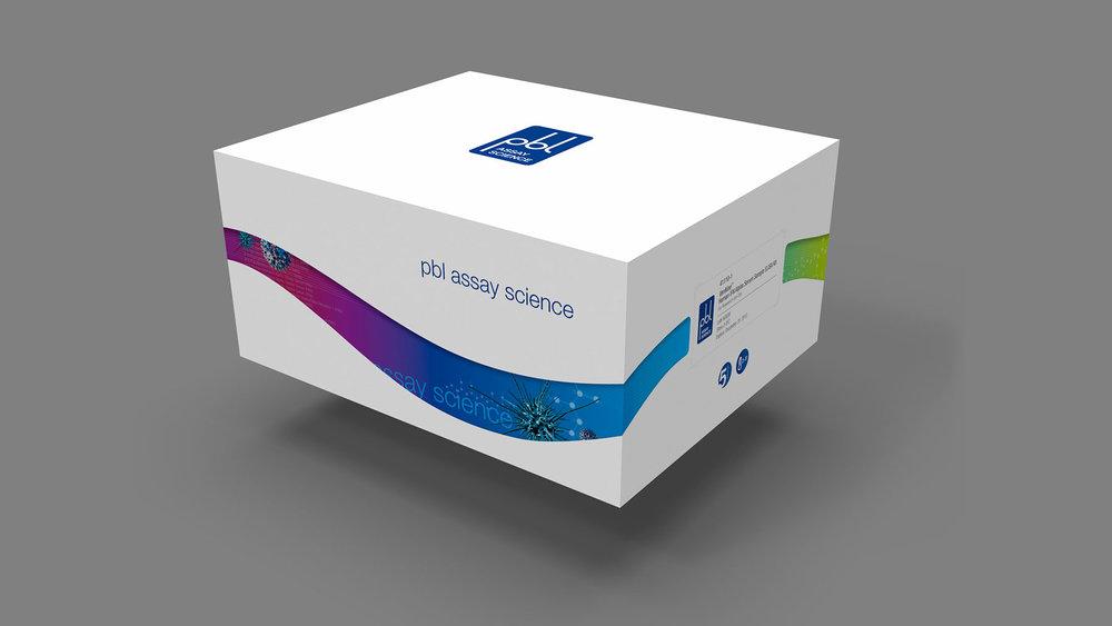 box1front-01_s.jpg