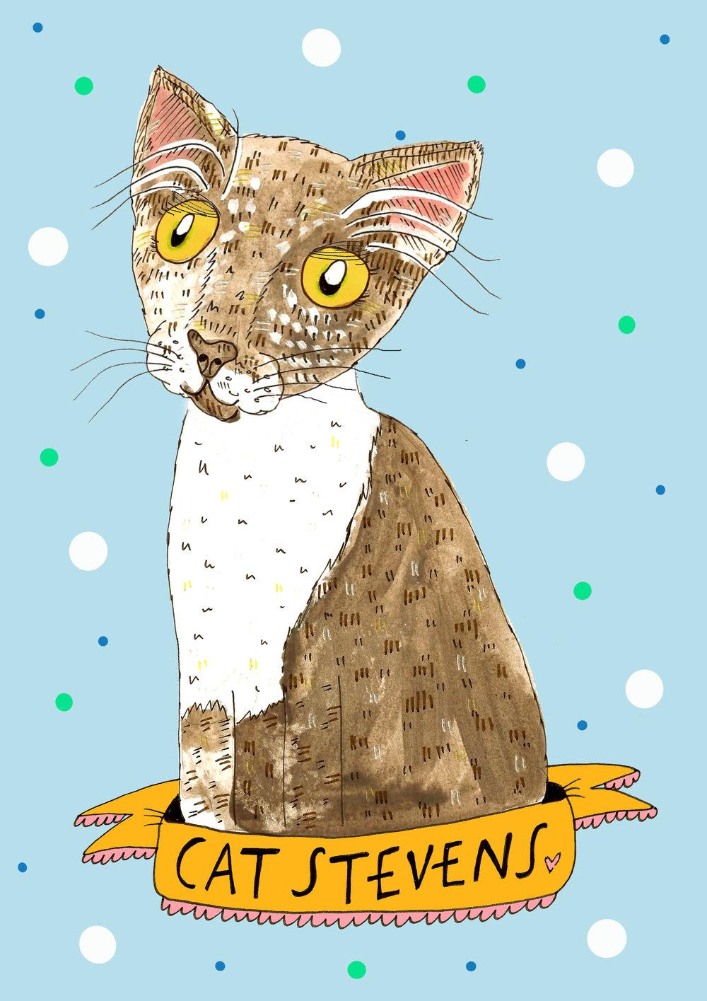 Cat Stevens EDIT.jpg
