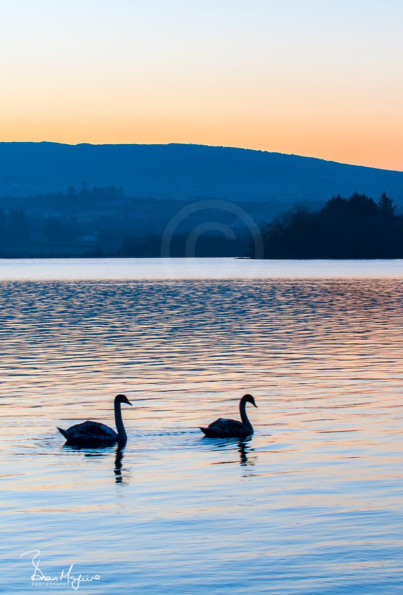 DL0016 Lough Eske Dawn
