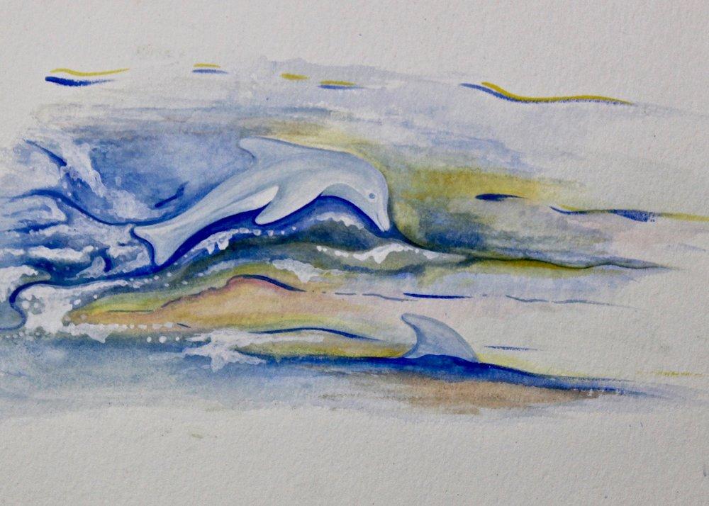 Swim With Me -  2006 watercolour on paper 20cm x 26cm
