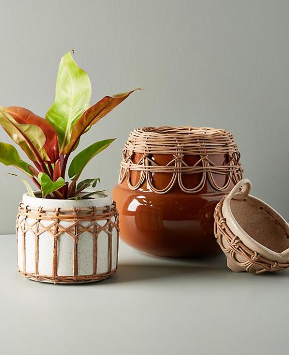 Pacifico Plant Pot