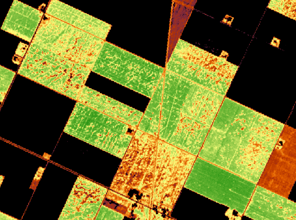 Fine Res Satellite - NDVI