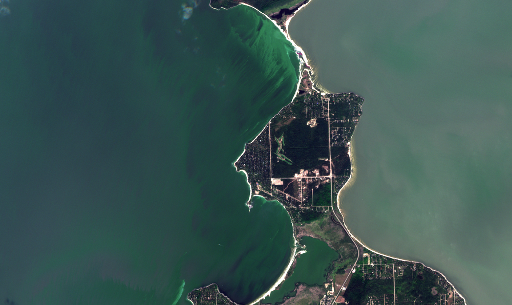 September 3, 2018. A zoom in of the above image showing high concentrations of algae at Hillside and Victoria Beaches. Waves crested green on this day on the peninsula south of Elk Island. The cusped shape of the shoreline holds the transported algae and builds concentrations higher than would be sampled in the offshore zone on this day.