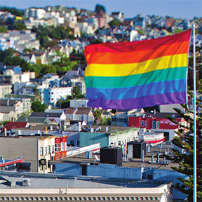 rainbow-flag-with-houses-beyond-3insquare.jpg