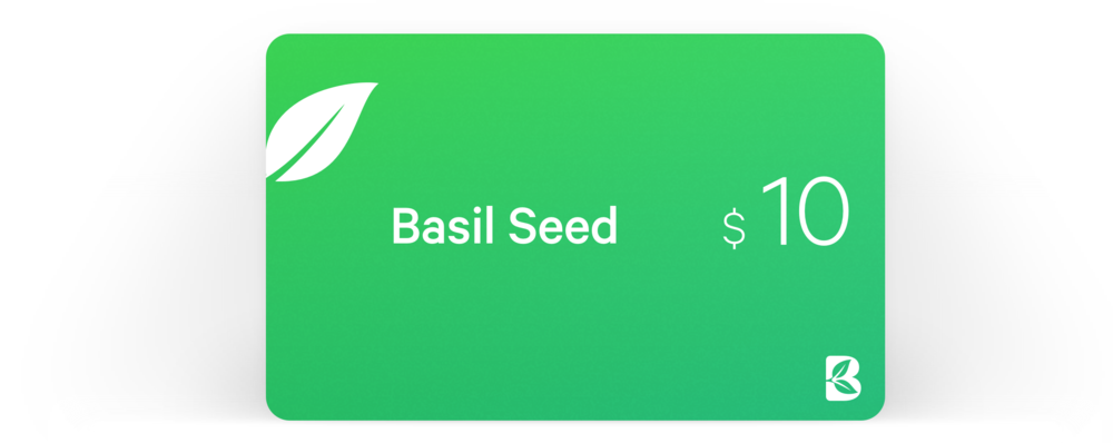 basil-seed-10.png