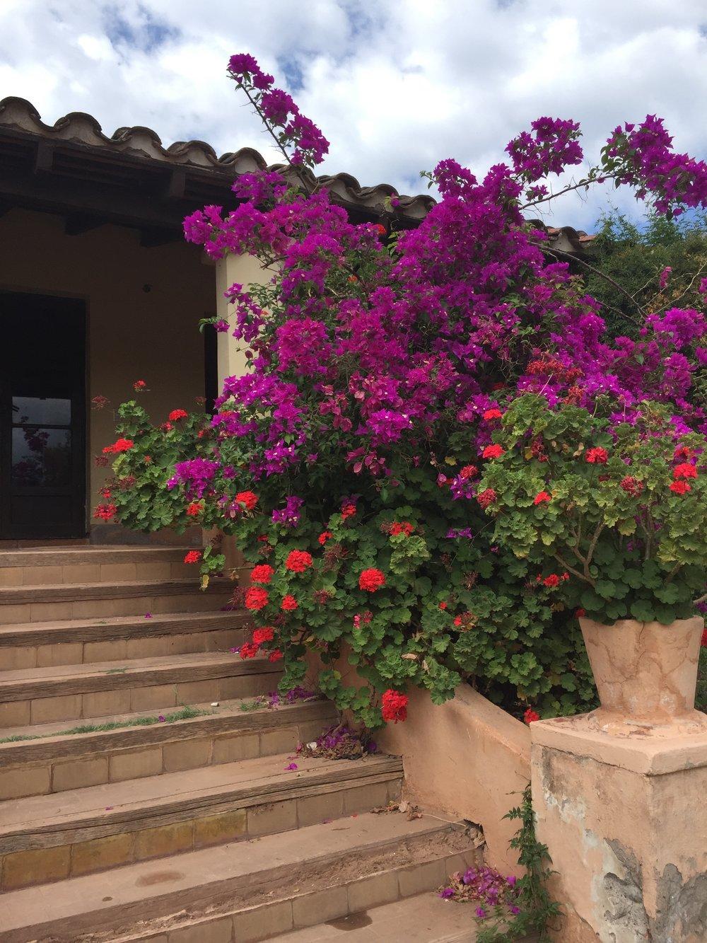 Colonial House Step Flowers - Copy - Copy - Copy - Copy - Copy - Copy.jpg