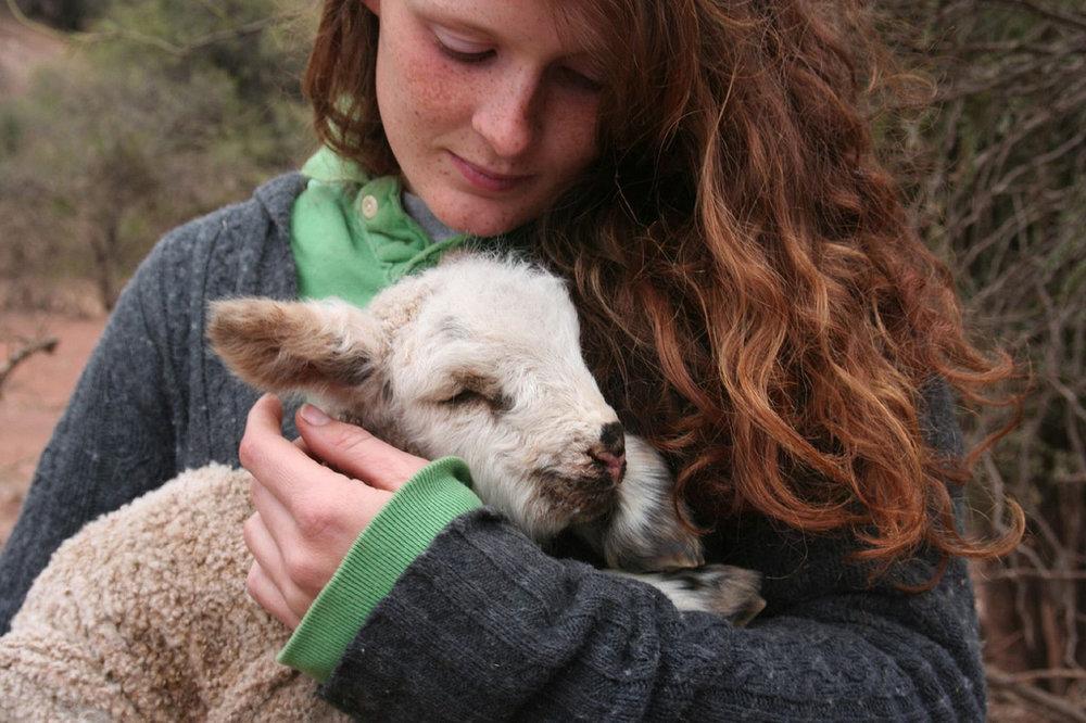 Girl and Lamb - Copy - Copy - Copy - Copy - Copy - Copy.jpg
