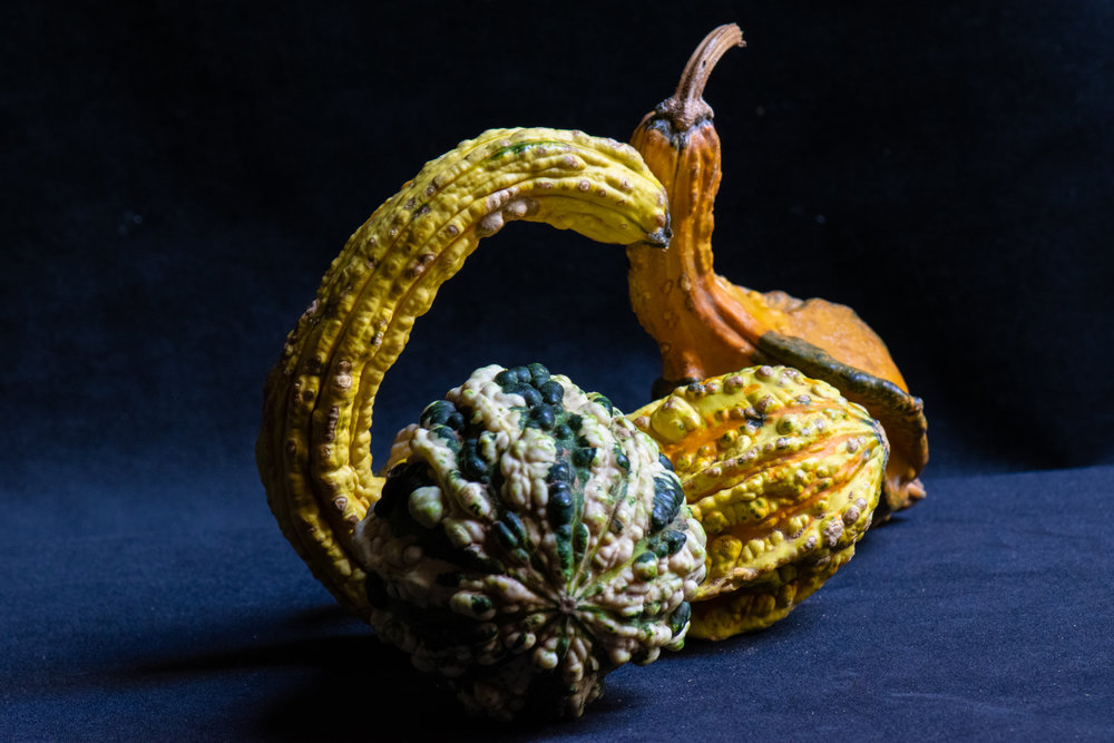 Smorgas-gourd.jpg