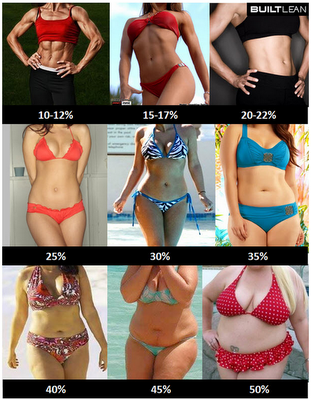 body fat images of women