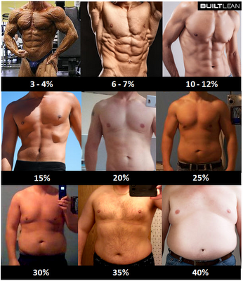 body fat images of men