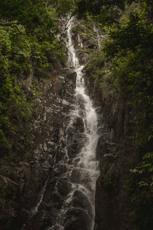sumatra-10-2.jpg