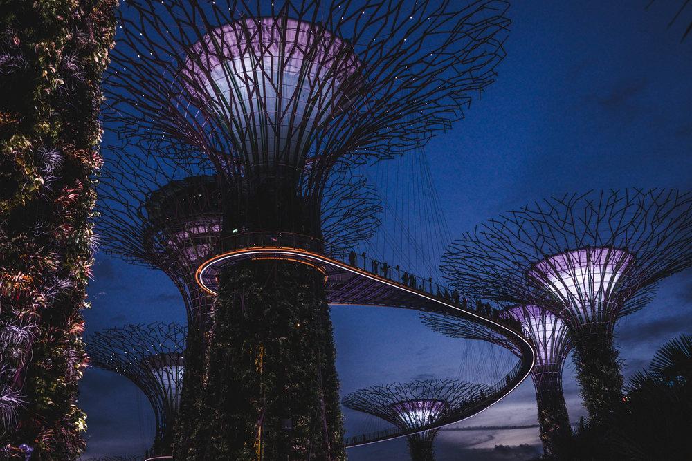 SINGAPORE-1-5.jpg