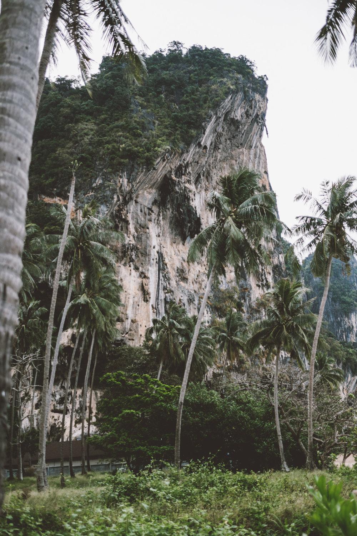 thailand-2-2.jpg