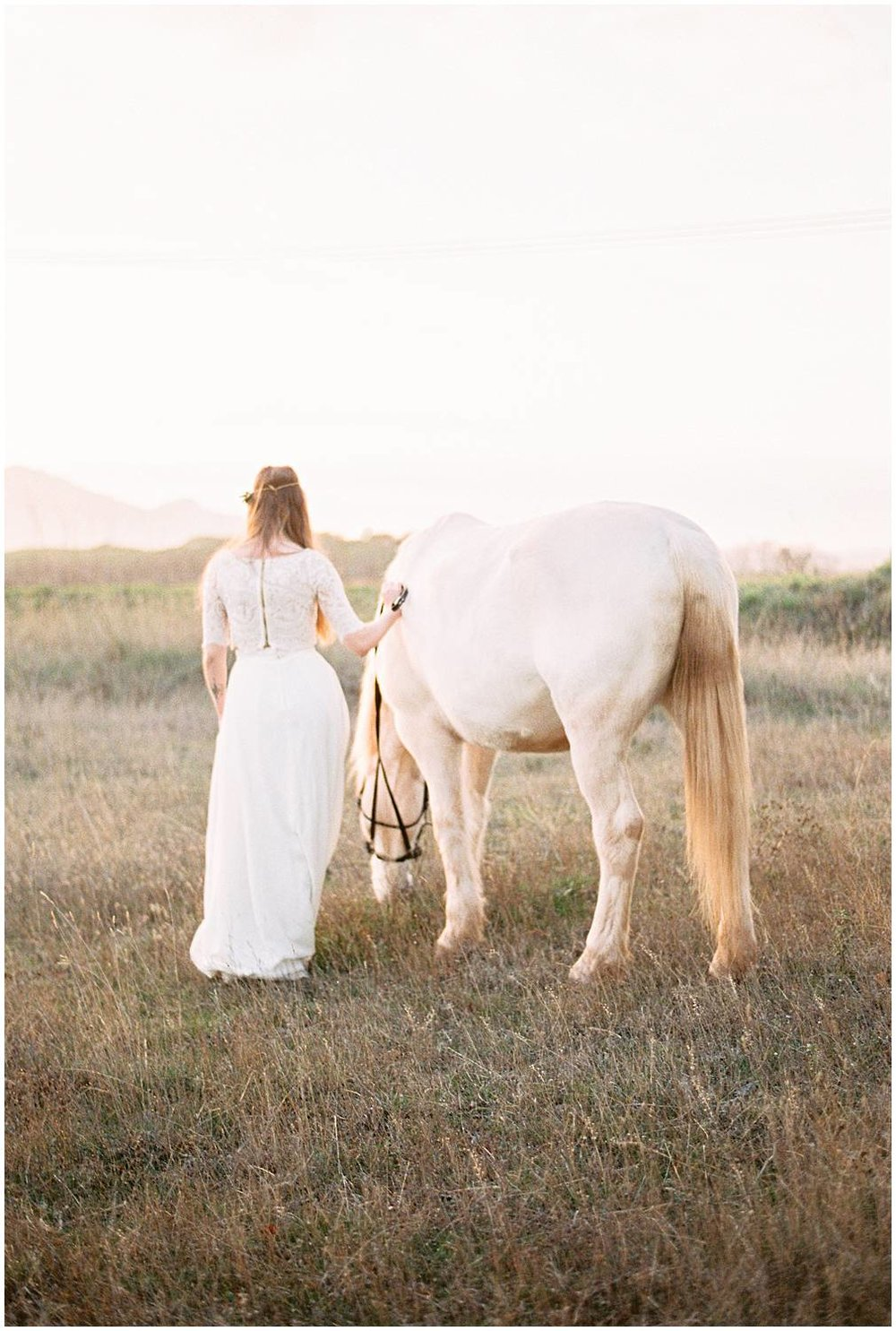 Sunset horse and bride in Provence