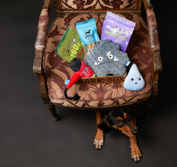 "This Halloween-themed BarkBox features the ""Rain of Terror"" and ""Scaredryer""."